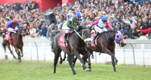 The Conglomerate Wins The 2016 Durban July, Cape Town Lately