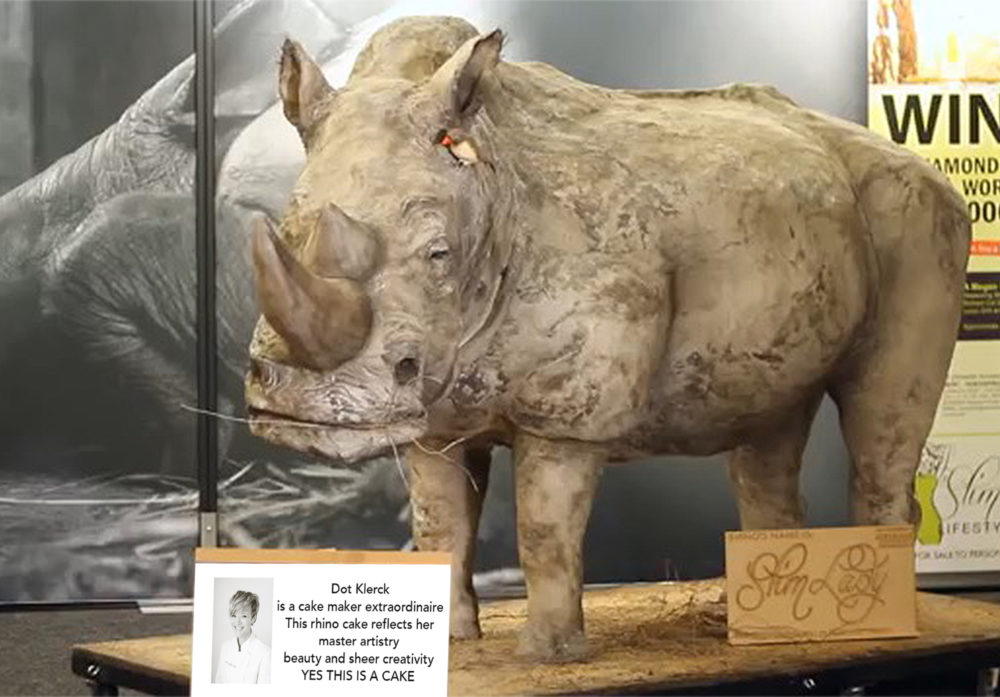 The World's Biggest Rhino Cake at the 2016 Good Food & Wine Show