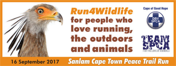 SPCA and anlam Cape Town Peace Trail Run, Cape Town Lately